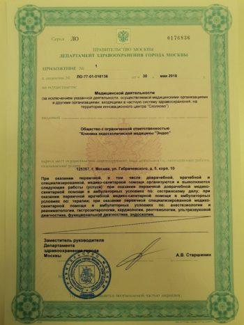Лицензия на осуществление медицинской деятельности центра эндоскопии и гастроэнтерологии Эндос