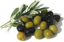 """Применение оливкового масла при лечении атонии """"ленивого желчного пузыря"""""""