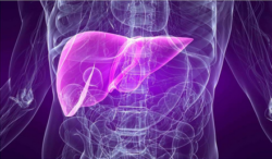 Хронический гепатит и цирроз печени