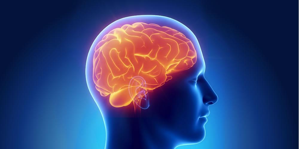 УЗИ сосудов головы и шеи в диагностическом центре Эндос