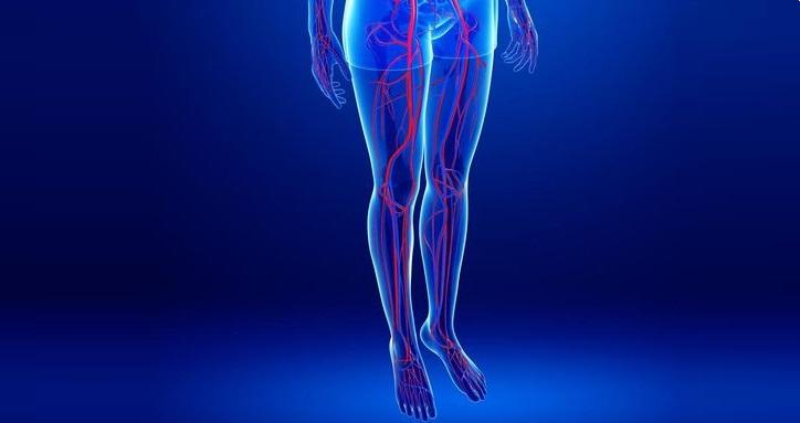 Ультразвуковаое обслеование вен нижних конечностей в диагностическом центре Эндос