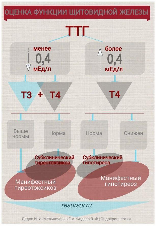 Оценка функции щитовидной железы по уровню тиреоидных гормонов, медицинская энциклопедия resursor.ru