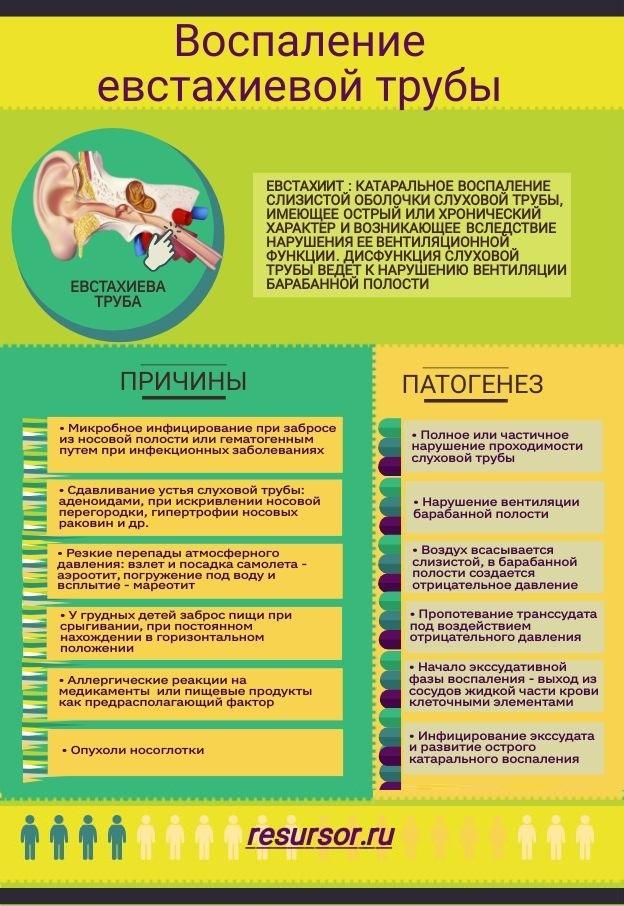 Воспаление слуховой трубы или евстахеит, причины, механизм развития; медицинская энциклопедия resursor.ru